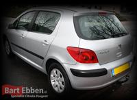 Peugeot 307 onderdelen gebruikt en nieuw online in de catalogus